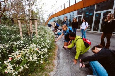 Touring a new eco-village in Stockholm, Sweden July 2019